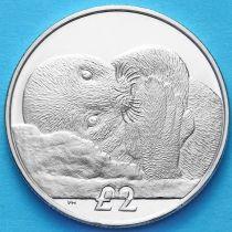 Южная Георгия и Южные Сэндвичевы Острова 2 фунта 2013 г. Тюлень