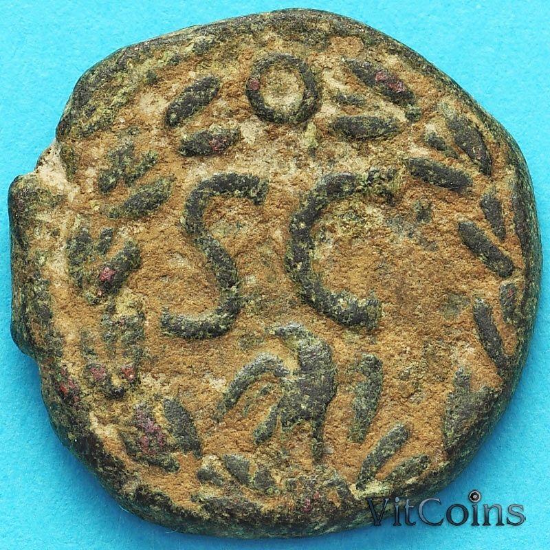 Монета Рим, провинция Сирия, Каракала  198-217 год. Антиохия.