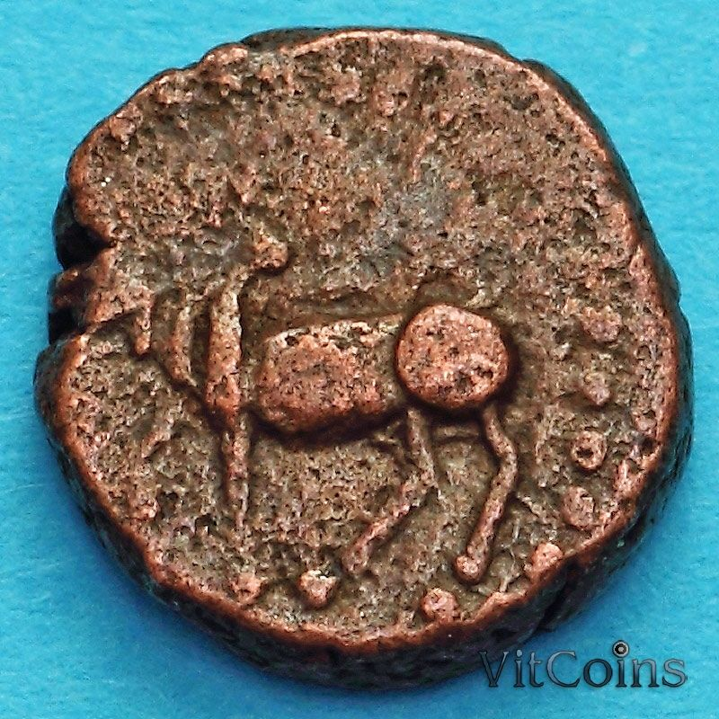 Древняя Индия, династия Нагас Падмавати 1/2 какини 335-340 год №1