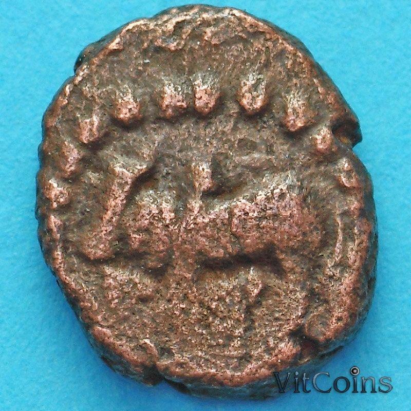 Древняя Индия, династия Нагас Падмавати 1/2 какини 335-340 год №10