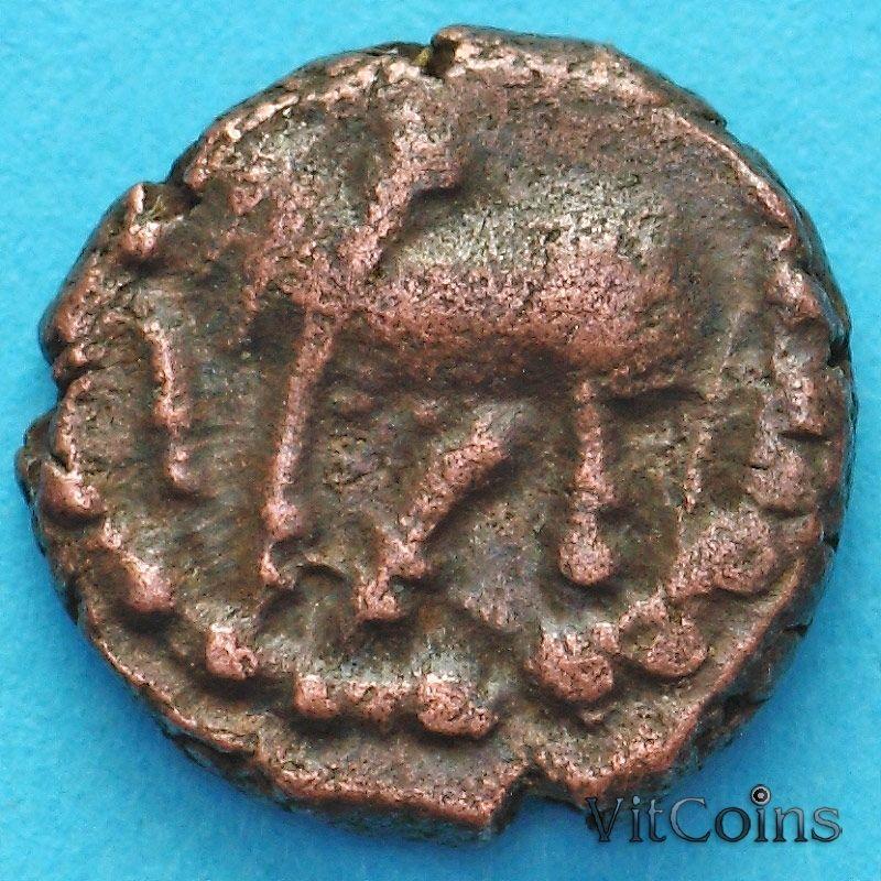 Древняя Индия, династия Нагас Падмавати 1/2 какини 335-340 год №6