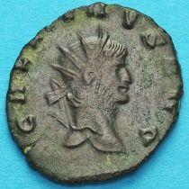 Галлиен,  антониниан, 260-268 год. Римская империя, Пегас.