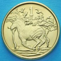 Ботсвана 1 пула 2013 год. Зебры.