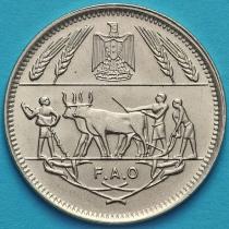 Египет 10 пиастров 1970 год. ФАО.