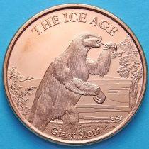 США жетон унция меди. Ледниковый период №1