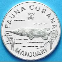 Куба 5 песо 1981 г. Панцирная щука. Серебро