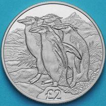 Южная Георгия и Южные Сэндвичевы Острова 2 фунта 2019 год. Золотоволосые пингвины.
