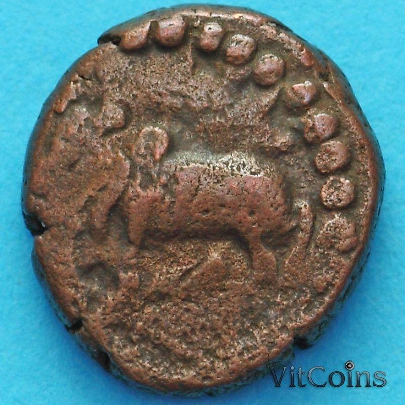 Древняя Индия, династия Нагас Падмавати 1/2 какини 335-340 год №2