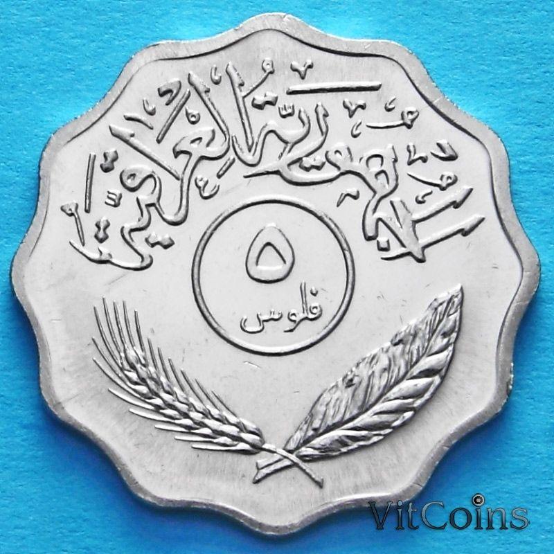 Монета Ирак 5 филсов 1971-1981 год.