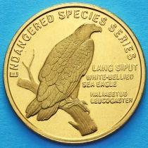 Малайзия 25 сен 2004 год. Белобрюхий орлан.