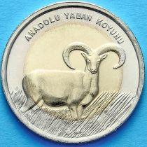 Турция 1 лира 2015 год. Дикий баран