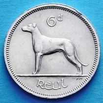 Ирландия 6 пенсов 1940-1968 год. Ирландский волкодав.