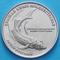 Приднестровье 1 рубль 2018 год. Осетр русский.