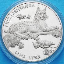 Украина 2 гривны 2001 год. Рысь.